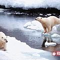 北極熊無處可去