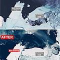 由於受到較老的「B9B」冰山的撞擊,一座新冰山於2月份從莫茲冰河舌上崩離出來。這是崩離前後的對比圖.jpg
