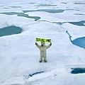 北極熊的口號