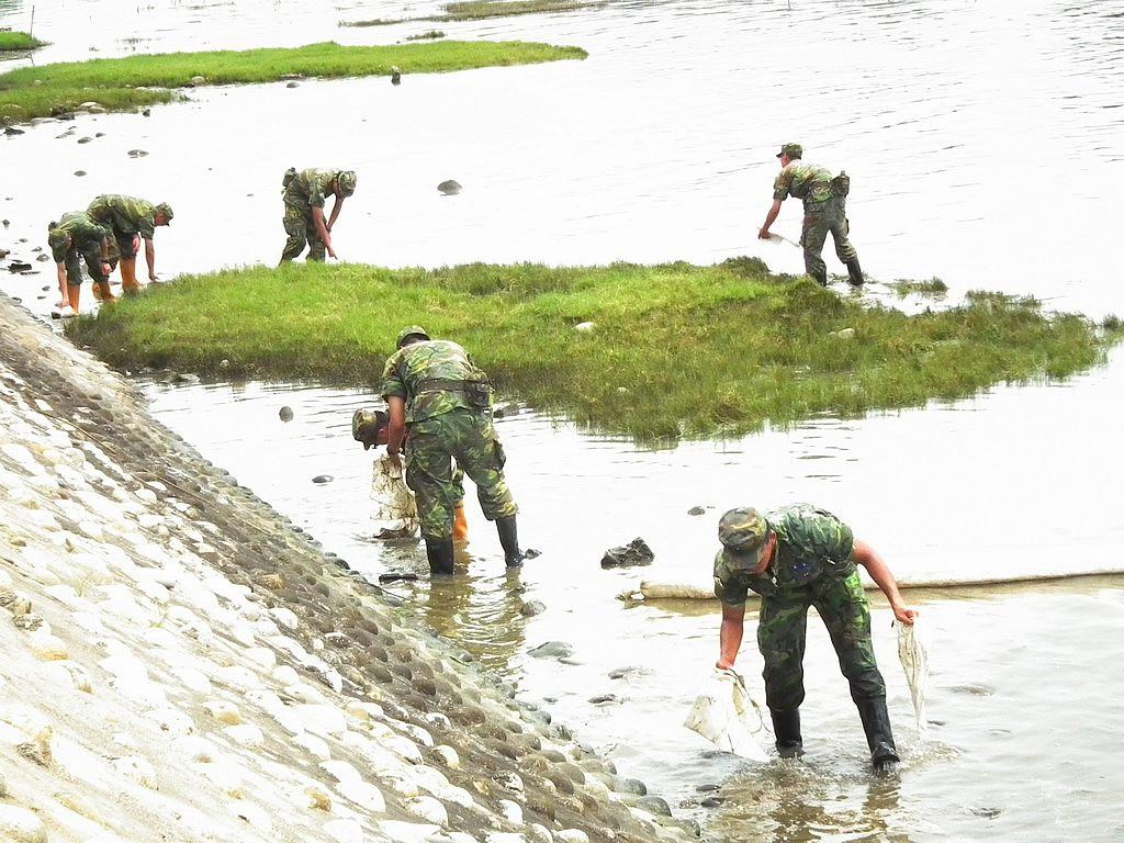 20100701-高美溼地污染-DSCF0300.JPG