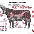 牛隻食用部位名稱