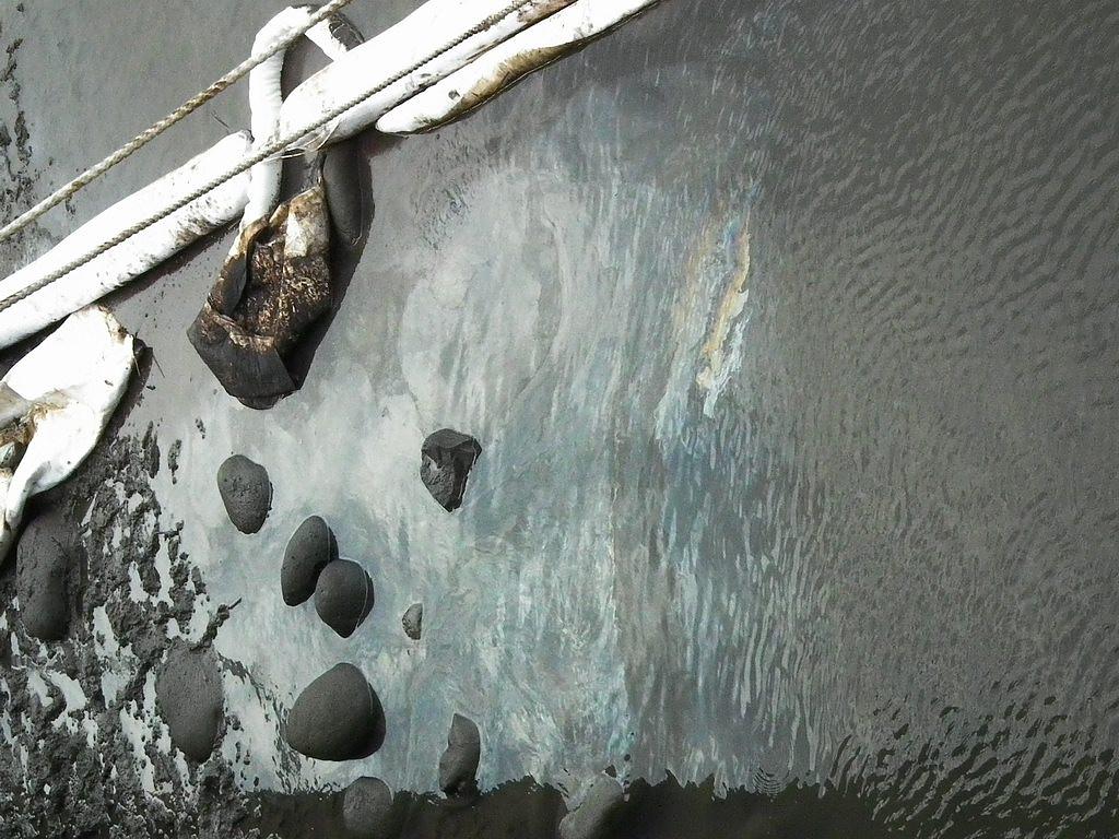 20100701-高美溼地污染-DSCF0363.JPG