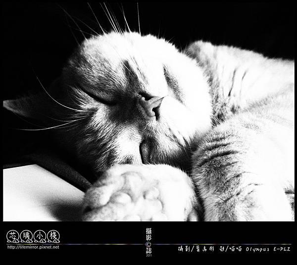 睡到頭都歪一邊了~ 舒適~ 2011-Olympus-EPL2