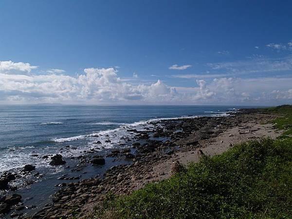 伽路蘭海邊的植物與岩石2