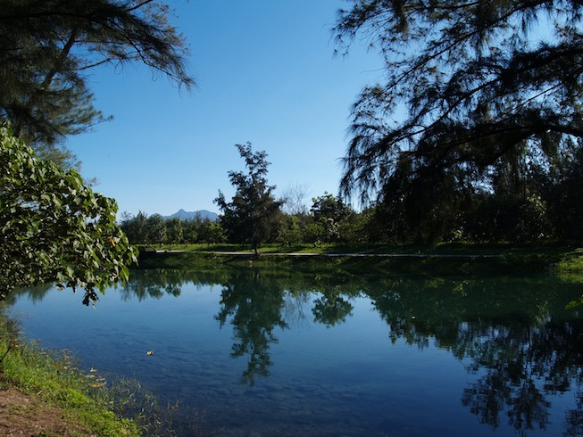 琵琶湖夢幻的色彩宛如上帝的詩篇2