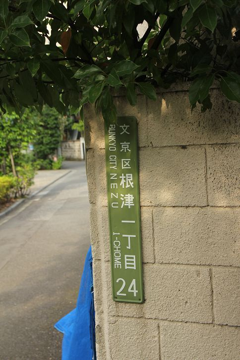 IMG_9293.jpg