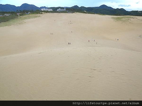鳥取砂丘(16)