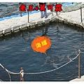 澎湖DAY1 (008).jpg