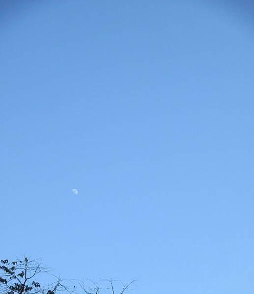20141230_moon.jpg