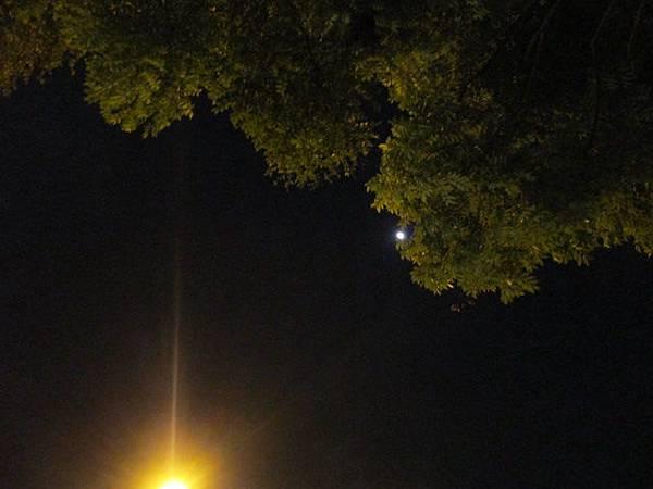 20150428_moon1.JPG