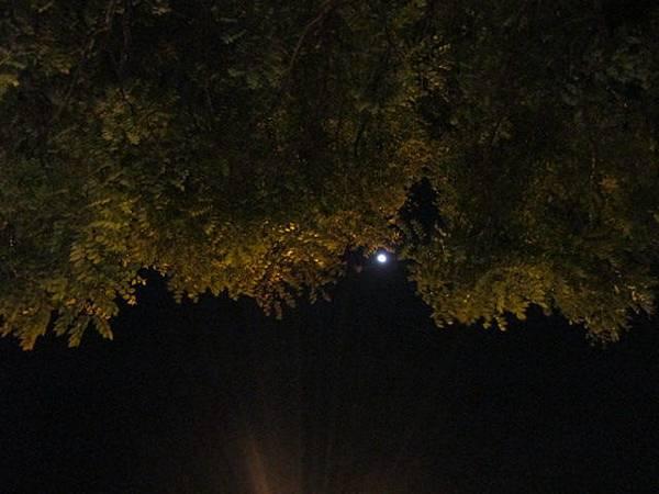 20150428_moon2.JPG