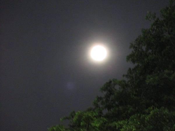 20150730_moon_2.JPG