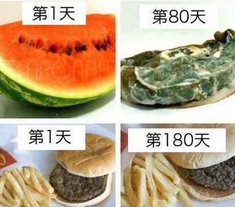 連細菌都不敢吃的東西
