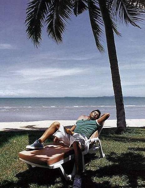 男人,大海,椰子樹,涼椅