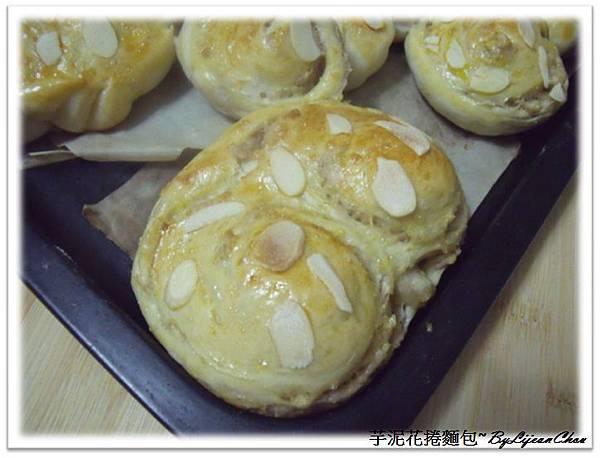 16.芋泥麵包 (5).jpg