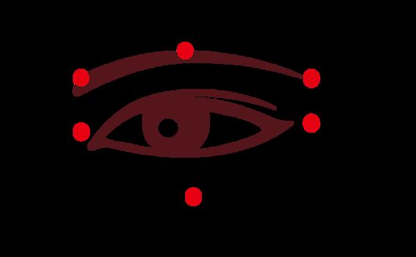 中醫穴位的常用睛明穴(兩眼內側近鼻處)、攢竹穴、魚腰穴、絲竹空穴、瞳子髎穴、四白穴(後五穴均在眼眶周圍)等,適度按摩對眼睛保健均有幫助。