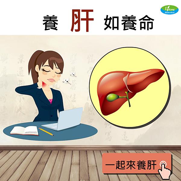 立康-養肝
