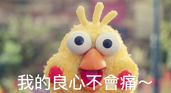 鸚鵡兄弟 (1).png