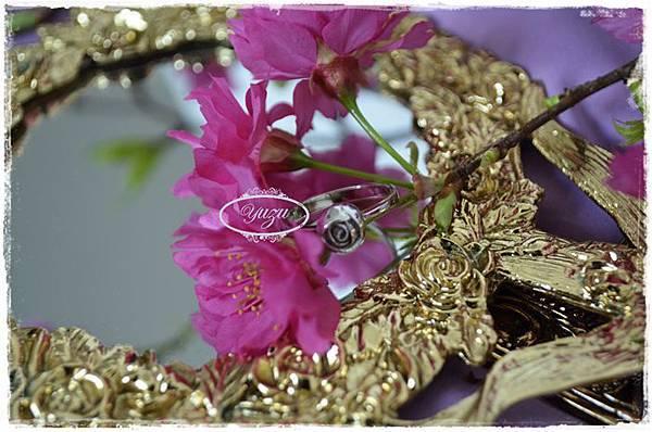 戒-小王子的玫瑰花