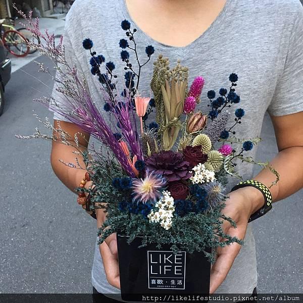 台北乾燥花店-乾燥花乾燥花盆栽