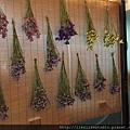 台北乾燥花-星辰花束教學