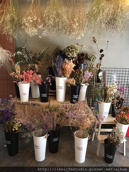 台北乾燥花推薦-喜歡生活乾燥花店,乾燥花花材批發