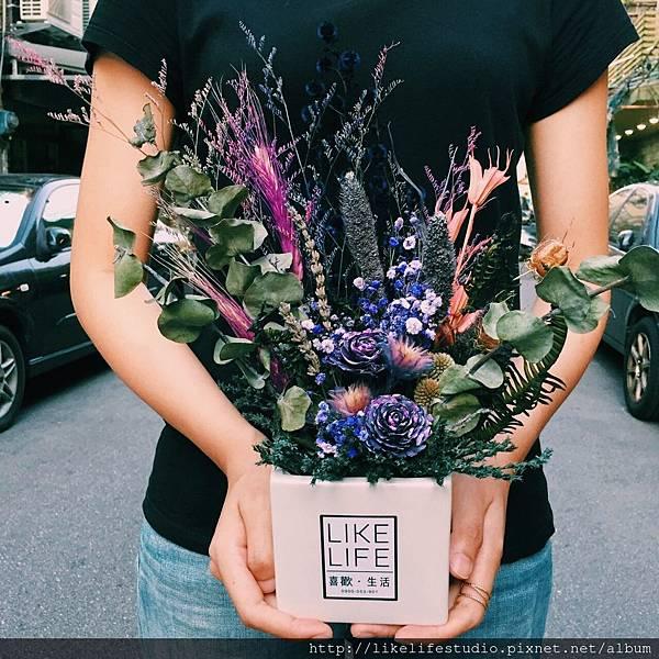 台北乾燥花店-喜歡生活乾燥花店,乾燥花花盆推薦3