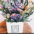 台北乾燥花店-喜歡生活乾燥花店,乾燥花花盆推薦