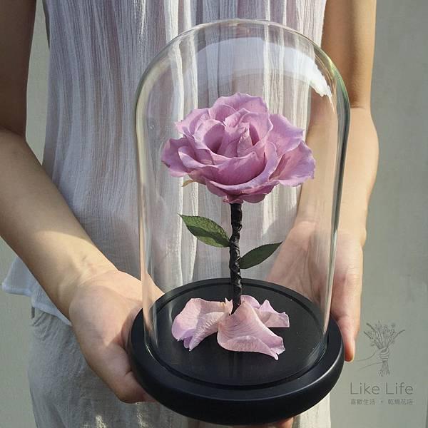 永生花玫瑰玻璃罩,台北永生花玫瑰推薦,喜歡生活乾燥花店