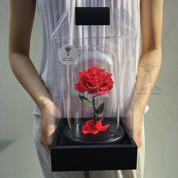 永生花紅玫瑰玻璃罩,台北永生花玫瑰推薦,喜歡生活乾燥花店