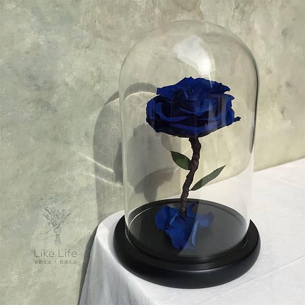 永生花藍玫瑰玻璃罩推薦,台北永生藍玫瑰推薦,喜歡生活乾燥花店