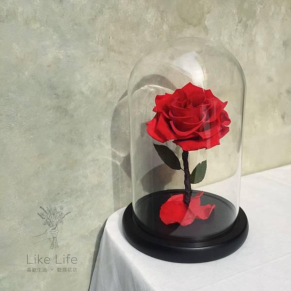 道歉永生玫瑰花玻璃照,道歉花束推薦