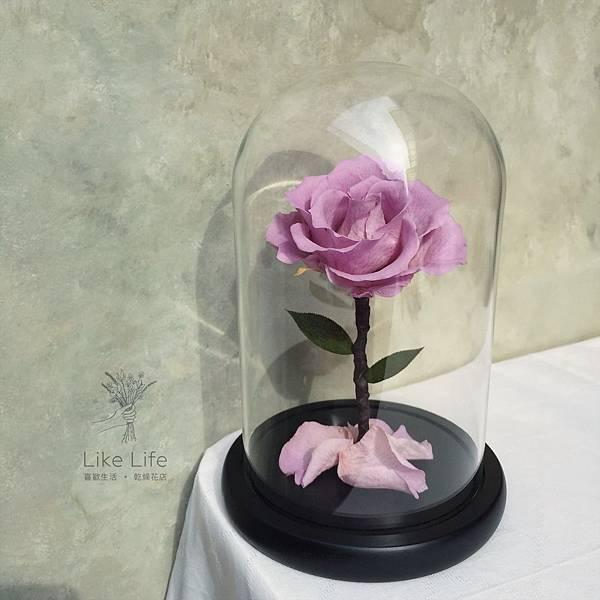 永生玫瑰花玻璃罩,永恆花推薦、恆星花推薦