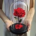 永生花,台北永生玫瑰花紅色-喜歡生活乾燥花店