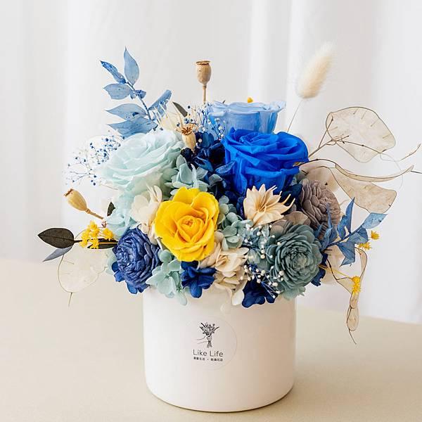 永生花盆栽(大藍),開幕盆栽推薦台北,喜歡生活乾燥花店-首圖.jpg