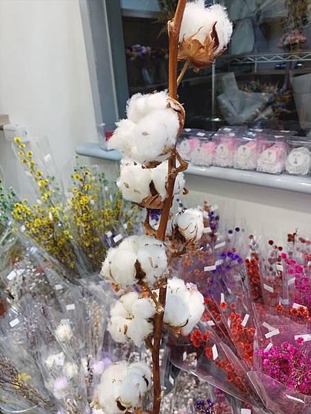 母親節乾燥花束推薦,乾燥木棉花,棉花.JPG