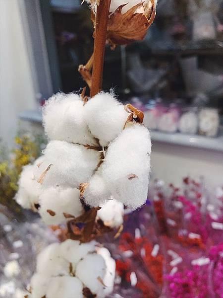 母親節乾燥花束推薦,語是什麼木棉花的花語.JPG