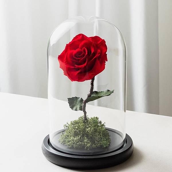 紅色永生玫瑰花玻璃罩封面-喜歡生活乾燥花店,代客送花送宜蘭.jpg