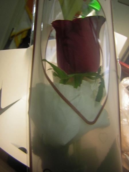 2009小百合生日~獅子送來的玫瑰桔梗花