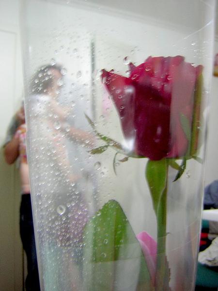 2009情人節-花+送我花ㄉ2個男人