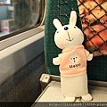 小兔子亮相