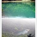 新山‧夢湖