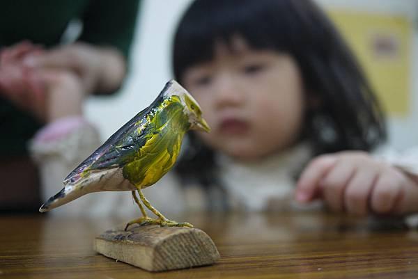 Nita 的鳥