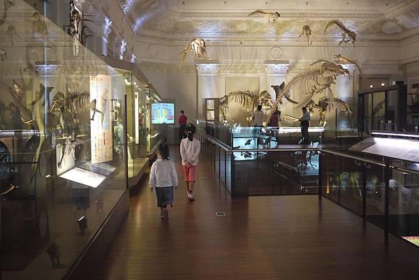 優游博物館
