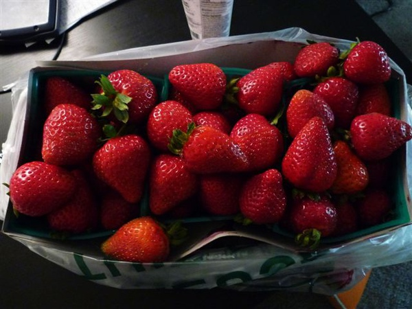 Strawberry@farmer's MKT (3).JPG