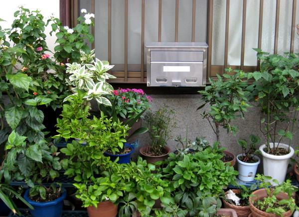 20071007民宿附近町家2.JPG