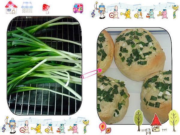 蔥花麵包~中種法