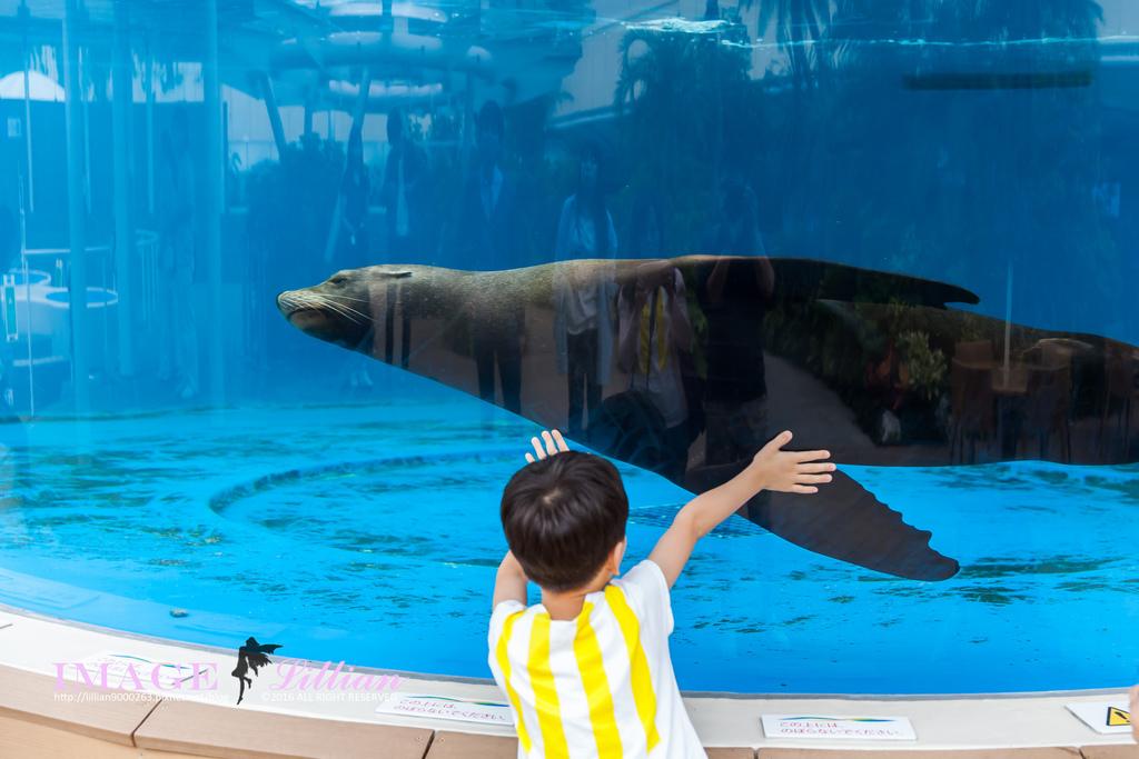 Aquarium-75.jpg