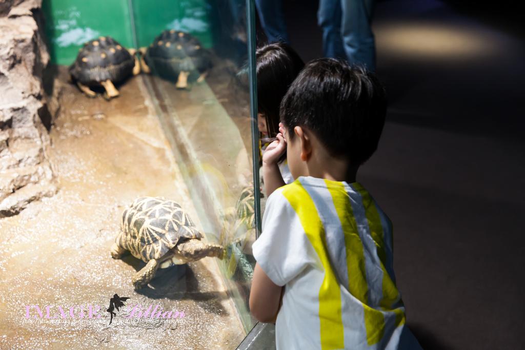 Aquarium-98.jpg