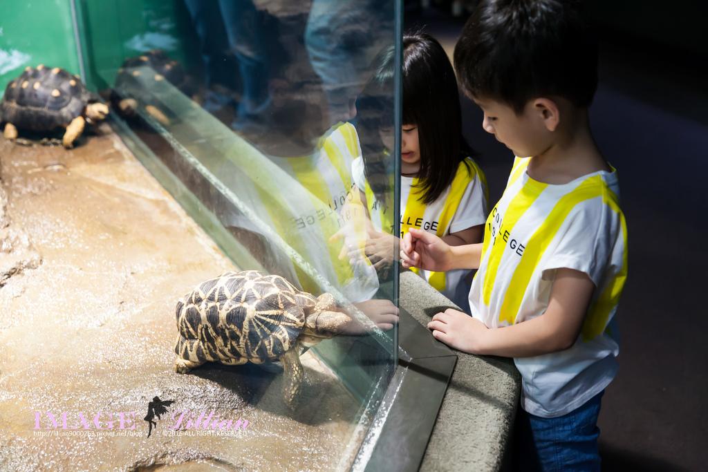 Aquarium-99.jpg